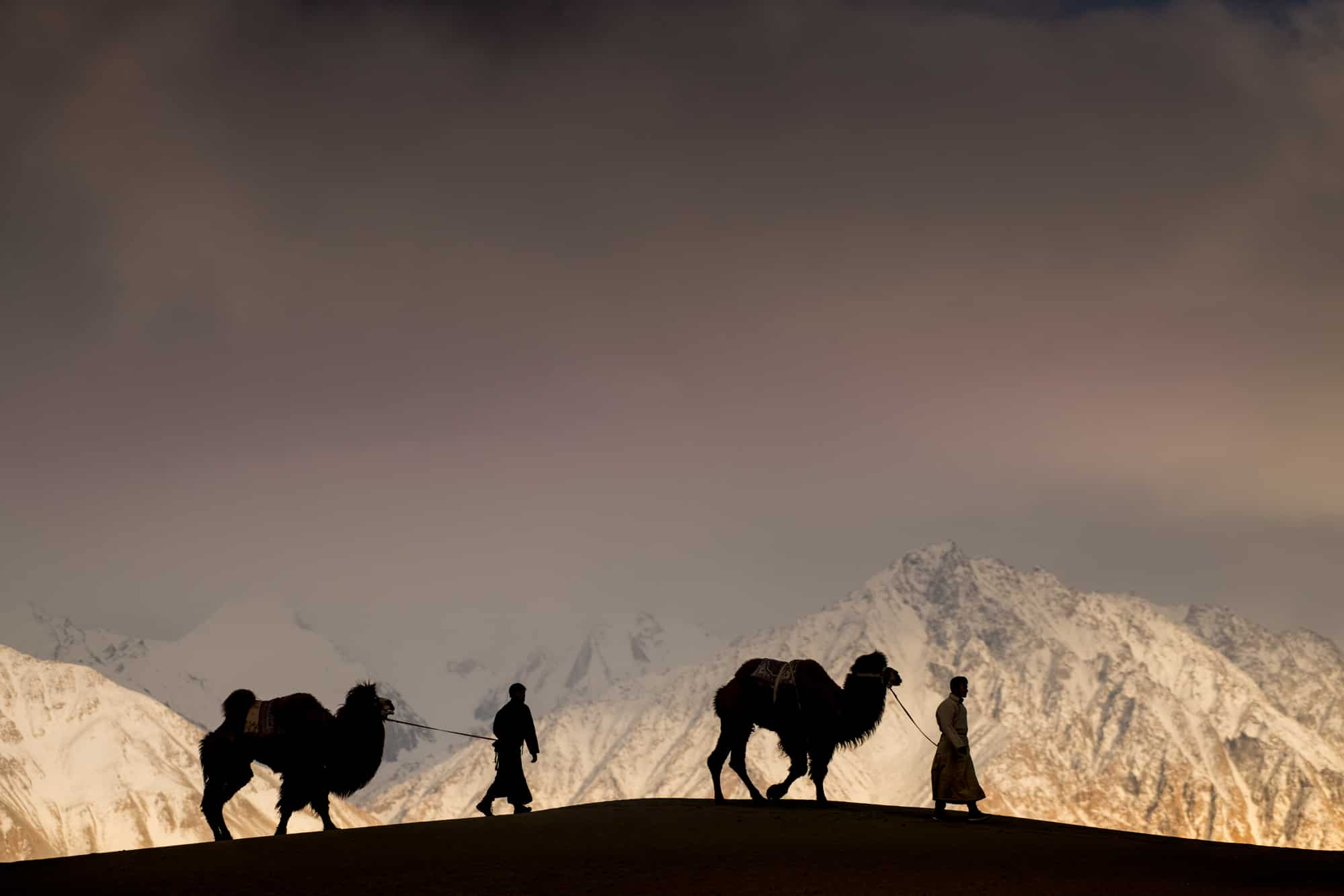 Ladakh With Robert Van Koesveld