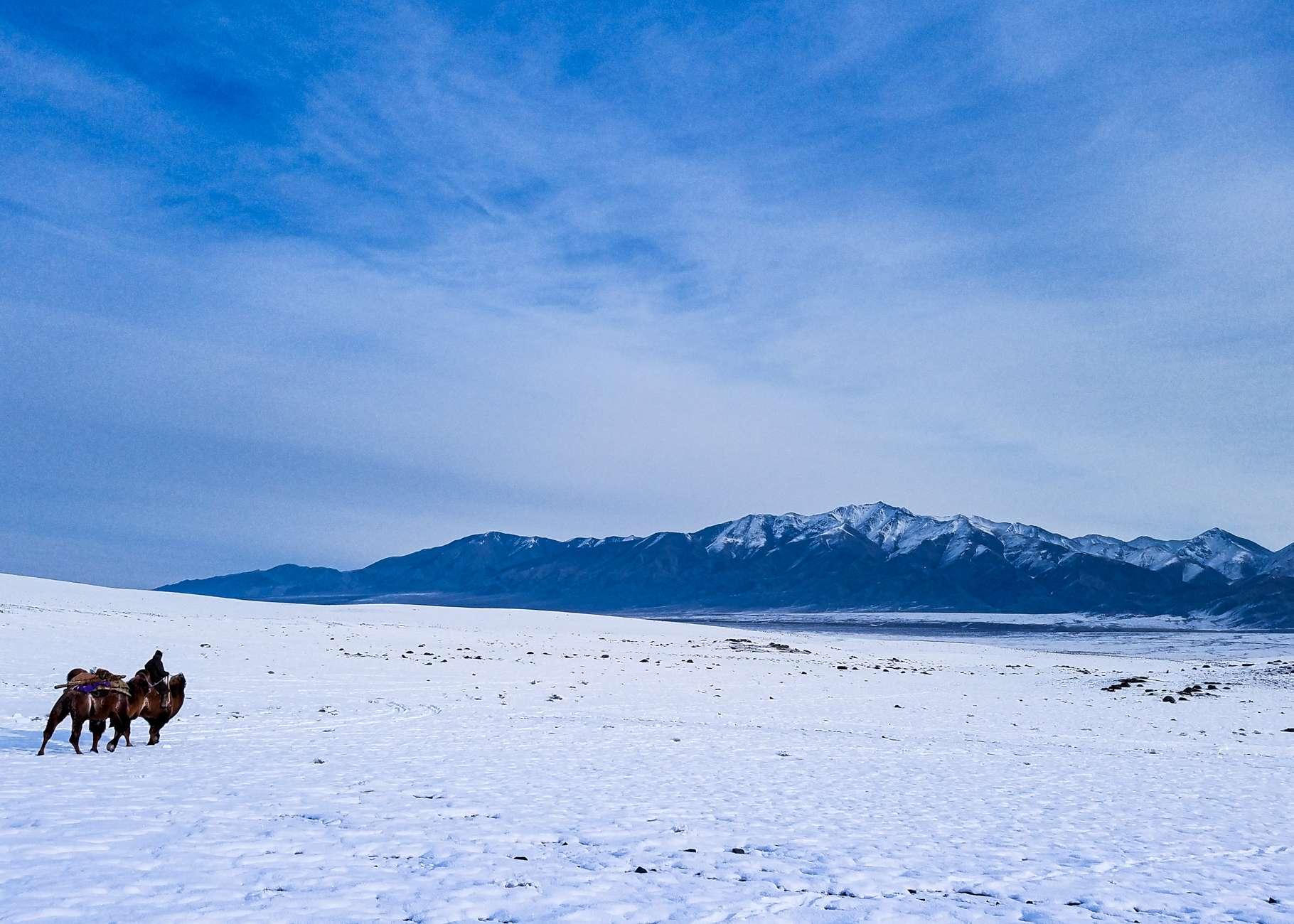 Typical Winter Landscapes On A Snow Leoaprd Tour To Mongolia
