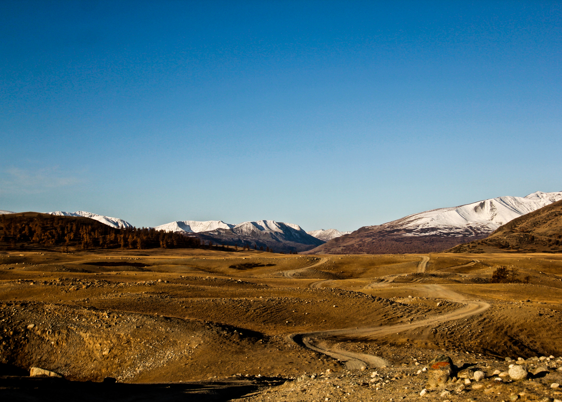 More Vast Landscapes On The Snow Leopard Tour To Mongolia