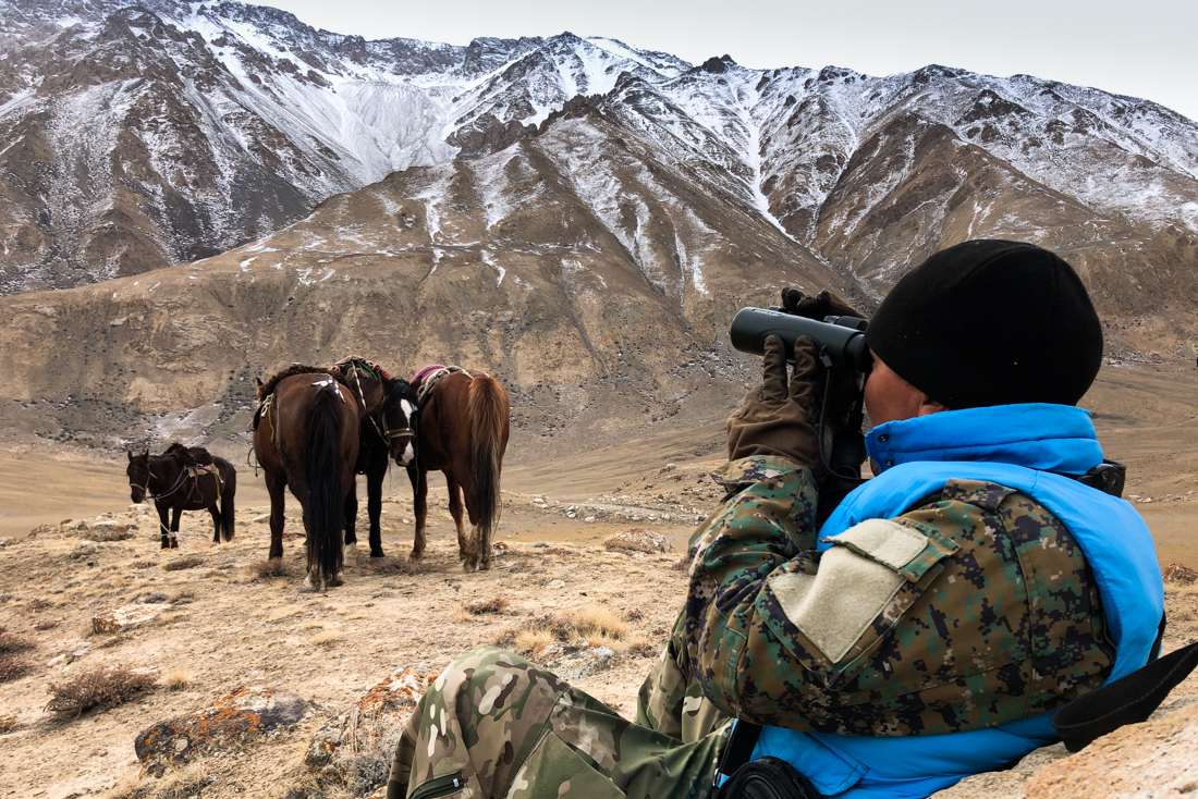 A Ranger Scans For Argali And Snow Leopards In Sarychat Ertash State Nature Reserve On The Snow Leopard Expedition To Kyrgyzstan