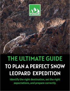 http://voygr.com/wp-content/uploads/2021/02/The_Ultimate_Guide_To_Plan_A_Perfect_Snow_Leopard_Expedition_from_Voygr